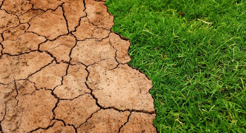 Klimawechsel mit Rendite